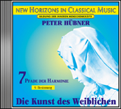 Peter Hübner - 9th Meditation